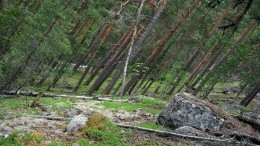 Аномалии в Ростовской области - что мистического происходит в России