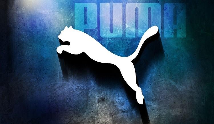 Как был создан бренд PUMA - история успеха культовой компании