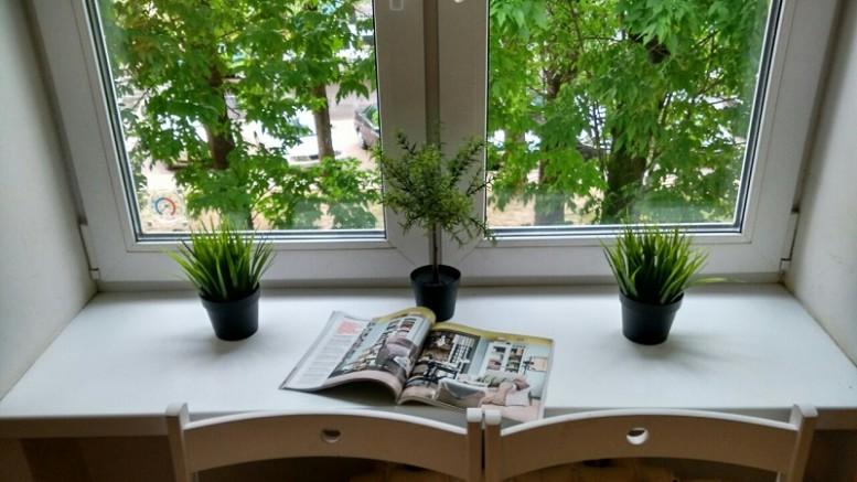 Искусственные растения - где купить в России и как применять в обустройстве помещения
