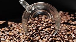 Где купить кофе в зернах в Украине от известных мировых производителей