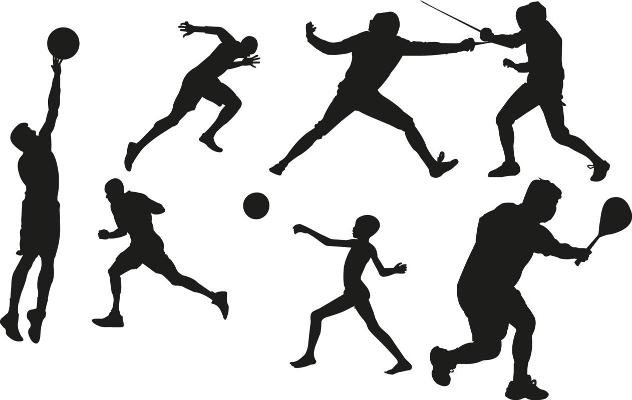Где купить товары для спорта в России по доступной цене с доставкой